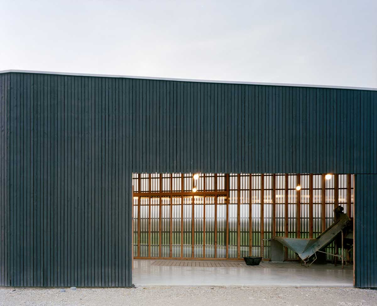 raum oyster farm hangar and temporary dwelling divisare. Black Bedroom Furniture Sets. Home Design Ideas